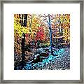 Hidden Stream  Framed Print