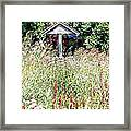 Hidden Wishing Well Framed Print by Christy Patino