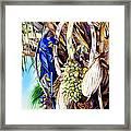 Hide-n-seek Hyacinths Framed Print