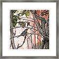 Hiding In The Gardens Framed Print