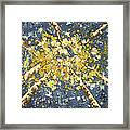 High - Aspens Framed Print