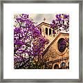 Historic Sierra Madre Congregational Church Among The Purple Jacaranda Trees  Framed Print
