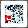 Holiday Birdhouse Framed Print
