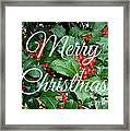 Holly Berries Merry Christmas Framed Print