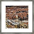 Hoodoos At Bryce Framed Print