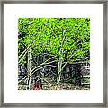 I See You 6172 Framed Print