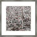 Ice Abstract 1 Framed Print