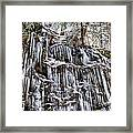 Icicles On Forbidden Drive Framed Print