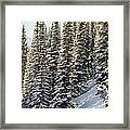 Icing On The Trees Framed Print