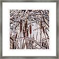 Icy Cattails Framed Print