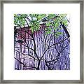If Wood Could Talk Framed Print