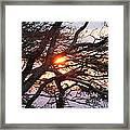 Illuminating Sunset Framed Print