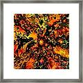 In A Tizzy  Framed Print