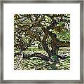 In The Depth Of Enchanting Forest I Framed Print