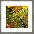 In The Flow 1 Framed Print