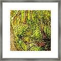 In The Heart Of The Forest Framed Print
