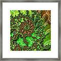 In The Jungle  Framed Print by Heidi Smith