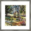 In The Pasture  Framed Print