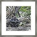 In The Treetop Framed Print