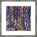 In The Woods V5 Framed Print
