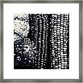 Indian Corn And Squash In Black And White Framed Print