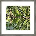 Indiana Reflections Framed Print