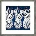 Indigo And White Pineapples Framed Print