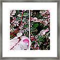 Indigo Plant In Stereo Framed Print