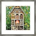 Insect Hotel Framed Print