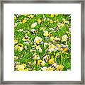 iPhone Case - Yellow And Green Framed Print