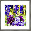 Irises And Delphinium In The Garden Framed Print