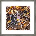 Iron Biscuit Framed Print