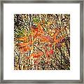 Is It Live Or Is It Memorex Framed Print by Frozen in Time Fine Art Photography