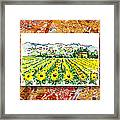 Italy Sketches Sunflowers Of Tuscany Framed Print