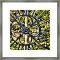 It's In The Details Framed Print