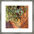 Ivy And Old Iron Gate Framed Print