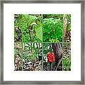 Jack-in-the-pulpit Wildflower    Arisaema Triphyllum Framed Print
