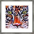 Jaguar Eyes-  Framed Print