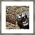 Jaguar Intensity Framed Print