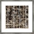 Japanese Bamboo Sepia Grunge Framed Print