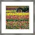 John Deere Tulips Framed Print