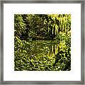 July Tranquil Indian Lake Framed Print