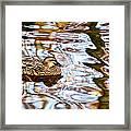 Jungle Water Framed Print