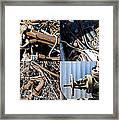 Junk Collage  Framed Print