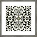 Kaleidoscope 28 Framed Print