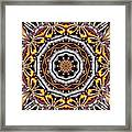 Kaleidoscope 41 Framed Print