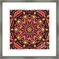 Kaleidoscope 42 Framed Print