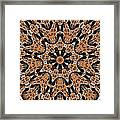 Kaleidoscope 62 Framed Print