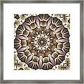 Kaleidoscope 65 Framed Print