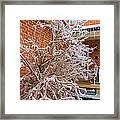 Karma In Winter Framed Print
